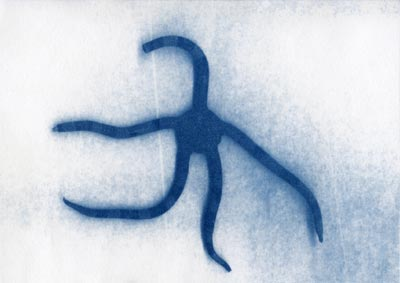 Cyanotype of brittle star