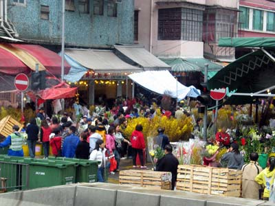 Flower markets in HK during the lunar new year period